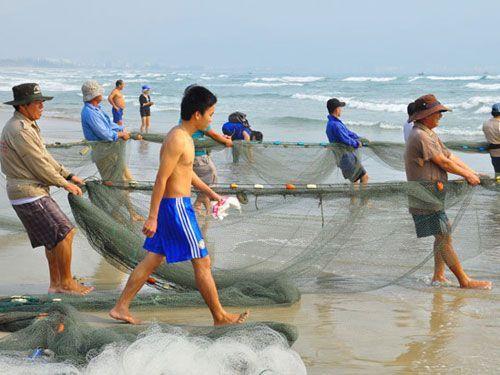 Ngư Dân Kéo Lưới - Du Lịch Biển Cam Bình